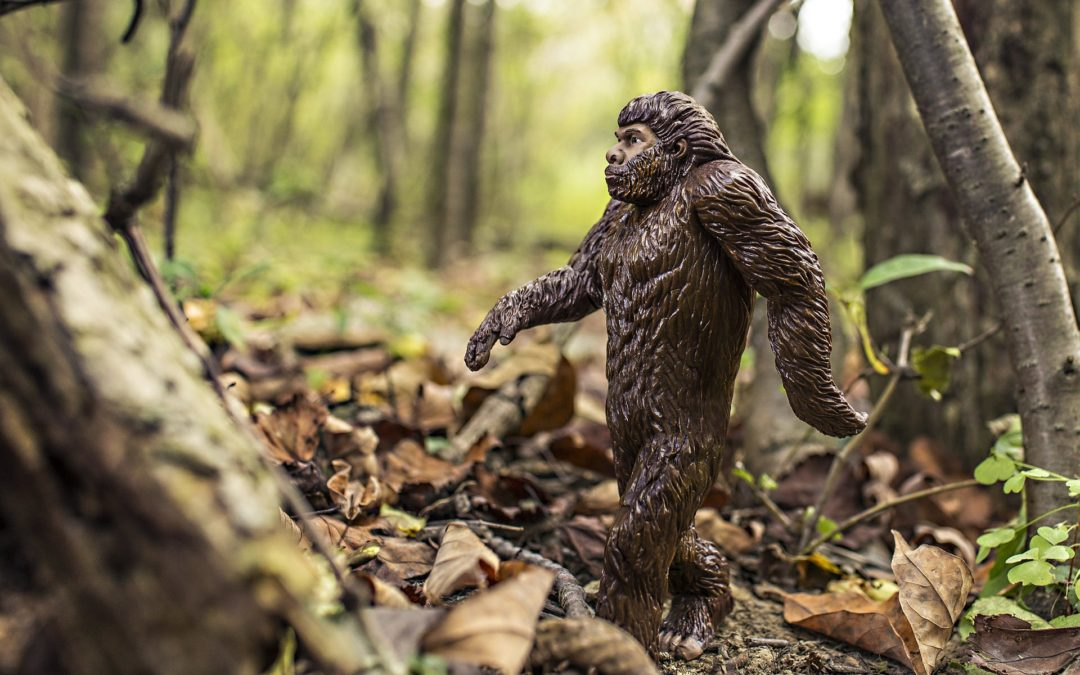 14 SONGS ABOUT BIGFOOT THAT DON'T SUCK