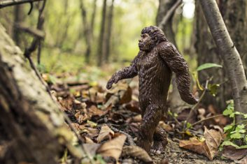 bigfoot songs image figure in woods